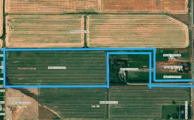 Bannock County, Bonneville County, Bingham County, Jefferson County, Madison County, Fremont County, Bear Lake County, Custer County, Power County, Teton County Farm For Sale: 235 N 4100 E