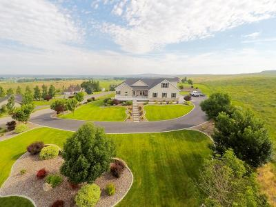 Idaho Falls Single Family Home For Sale: 5365 S Tappan Falls Drive