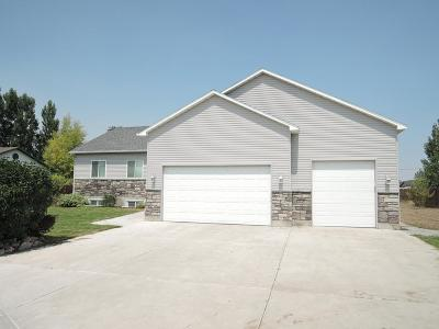 Idaho Falls Single Family Home For Sale: 4293 E Smithfield Way
