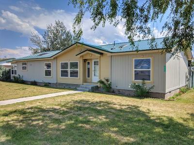 Idaho Falls Single Family Home For Sale: 3774 Greenwillow Lane