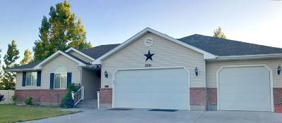 Idaho Falls Single Family Home For Sale: 3318 E Woodside Drive