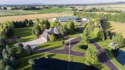 Blackfoot, Iona, Shelley, Ammon, Idaho Falls, Swan Valley, Ucon, Rigby Single Family Home For Sale: 4645 E 49th S
