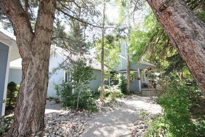 Idaho Falls Single Family Home For Sale: 2243 W 81st S