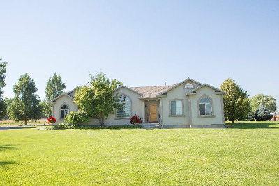 Blackfoot Single Family Home For Sale: 773 W 100 N