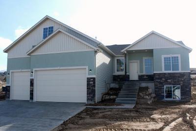 Pocatello Single Family Home For Sale: 1961 Magellan Loop