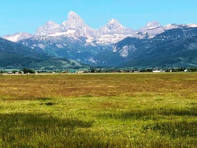 Teton County Farm For Sale: E 40 Ac W 4000 N