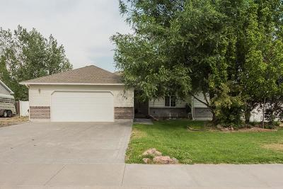 Blackfoot Single Family Home For Sale: 1278 Danielle Way
