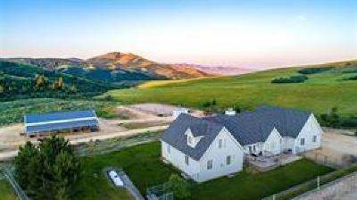 Pocatello Single Family Home For Sale: 10280 N Meadows