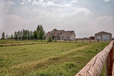 Idaho Falls Single Family Home For Sale: 13867 N 15 E