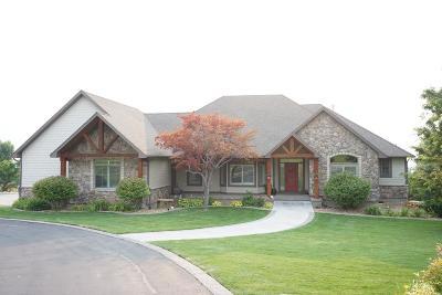 Idaho Falls Single Family Home For Sale: 7246 S Cliffside Lane