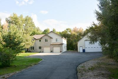 Rigby Single Family Home For Sale: 353 N 4420 E