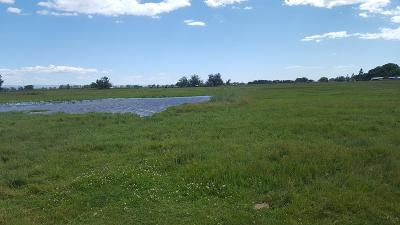 Fremont County Farm For Sale: Tbd 2925 E