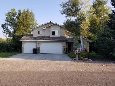 Blackfoot Single Family Home For Sale: 125 Kerr Lane