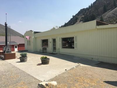 Custer County Single Family Home For Sale: 13 Silver Street