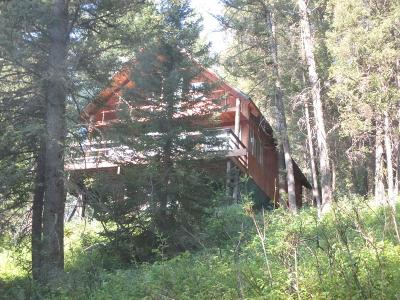 Fremont County Single Family Home For Sale: 4117 Spruce Street