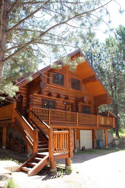 Ashton Single Family Home For Sale: 1469 Potpourri Drive