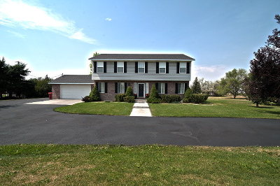 Rigby Single Family Home For Sale: 105 N 3900 E