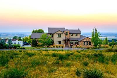 Idaho Falls ID Single Family Home For Sale: $875,000