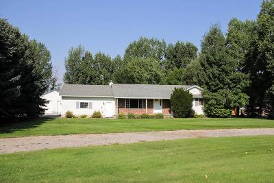 Rigby Single Family Home For Sale: 83 N 3900 E