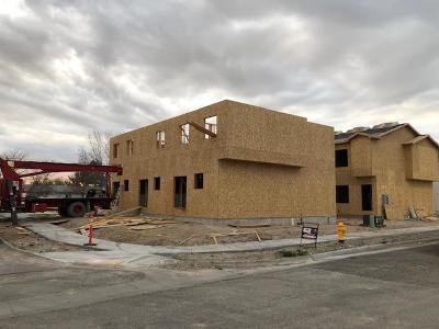 Idaho Falls Multi Family Home For Sale: 706 S Saturn Avenue #ABC