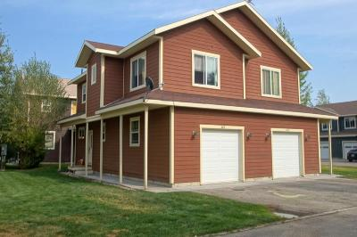 Teton County Single Family Home For Sale: 405 Forest View Drive #20