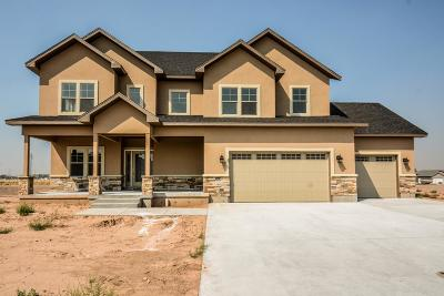 Idaho Falls Single Family Home For Sale: 2759 Pinfire Creek