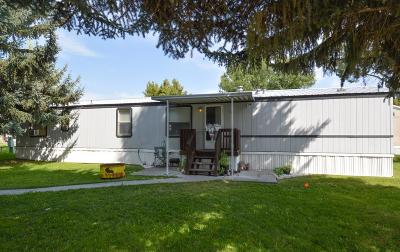 Blackfoot Single Family Home For Sale: 448 W Hwy 26 #19