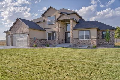 Idaho Falls Single Family Home For Sale: 2755 Spring Gulch Drive