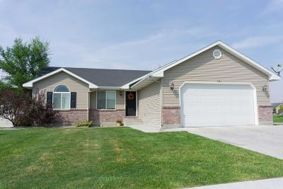 Idaho Falls Single Family Home For Sale: 3131 N Dallin Drive