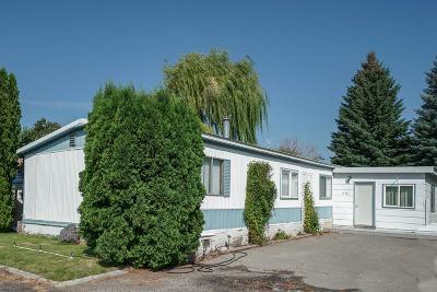 Idaho Falls Single Family Home For Sale: 1456 W Albany Street