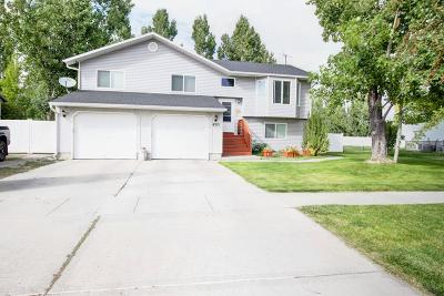 Ammon Single Family Home For Sale: 4215 Willow Canyon Drive