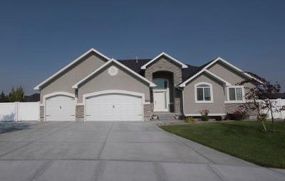 Idaho Falls Single Family Home For Sale: 5221 Villa Mirage Court
