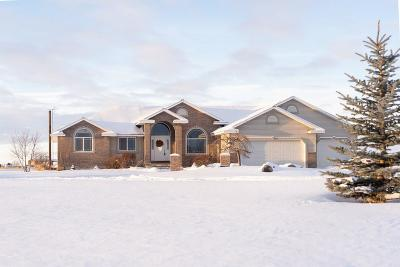Rigby Single Family Home For Sale: 4333 E 84 N