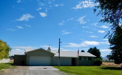 Shelley Single Family Home For Sale: 1457 N 1190 E