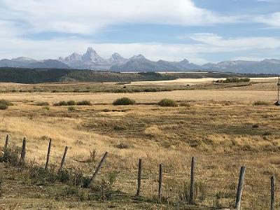 Teton County Farm For Sale: 1491 N Hwy 32