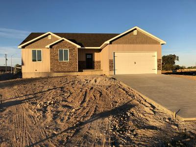 Rigby Single Family Home For Sale: 303 N 3811 E
