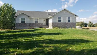 Rigby Single Family Home For Sale: 341 N 3710 E