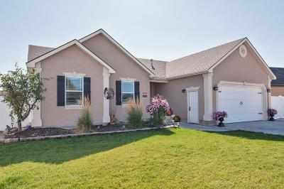 Idaho Falls Single Family Home For Sale: 2580 Eastview Drive