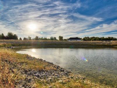 Rigby Residential Lots & Land For Sale: Tbd N 4420 E