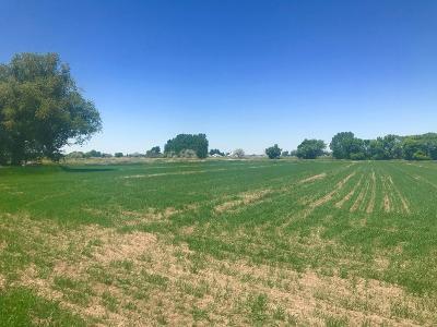 Idaho Falls Farm For Sale: Tbd E Foothill Road