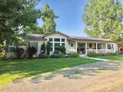 Fremont County Single Family Home For Sale: 337 N 2149 E