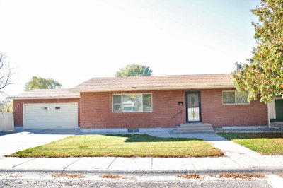 Blackfoot Single Family Home For Sale: 455 N Spruce Avenue