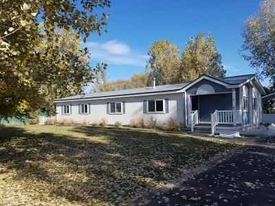 Fremont County Single Family Home For Sale: 34 N 3 E
