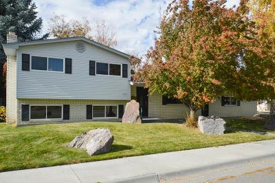 Idaho Falls Single Family Home For Sale: 1045 Norton Avenue
