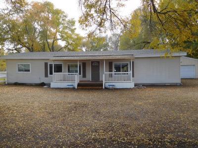 Blackfoot Single Family Home For Sale: 240 Topaz