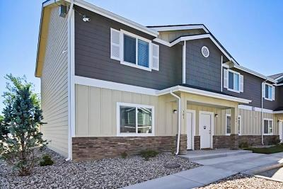 Idaho Falls Single Family Home For Sale: 722 Trails End Lane