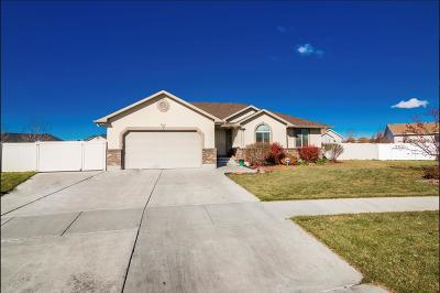 Ammon Single Family Home For Sale: 4029 Rulon Drive