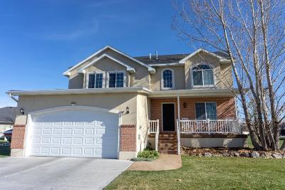 Ammon Single Family Home For Sale: 5231 Clearfield Lane