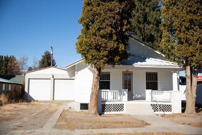 Blackfoot Single Family Home For Sale: 161 Pine Street