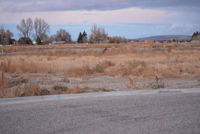 Idaho Falls Residential Lots & Land For Sale: 581 Glendora Circle